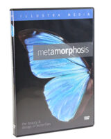 Metamorphosis: The Beauty and Design of Butterflies (DVD)